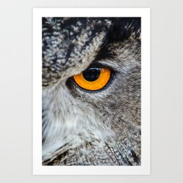 NIGHT OWL - EYE - CLOSE UP PHOTOGRAPHY - ANIMALS - NATURE Art Print