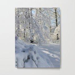 NH Winter Metal Print