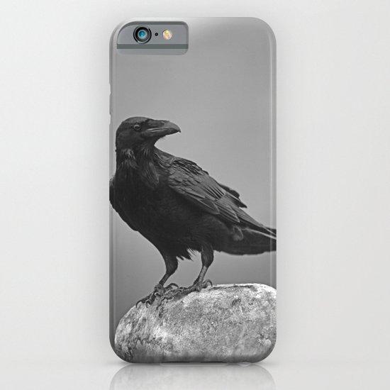 RAVENS ROCK iPhone & iPod Case