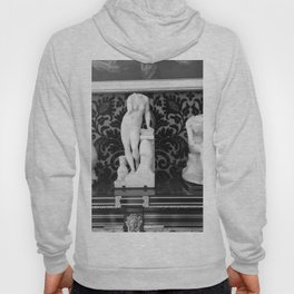 Versailles Statuettes Hoody