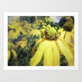 Bees on Yellow Flower Art Print