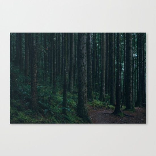 Forest mood Canvas Print