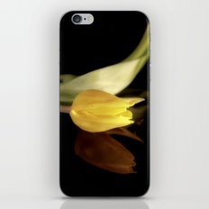 Silver Lining iPhone & iPod Skin