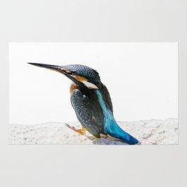 A Beautiful Kingfisher Bird Vector Rug