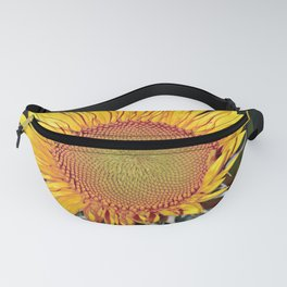 Floating SUN Fanny Pack