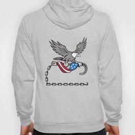 American Eagle Clutching Towing J Hook Flag Drape Retro Hoody