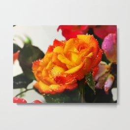Tropicana Rose Metal Print