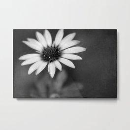 flower bw III Metal Print