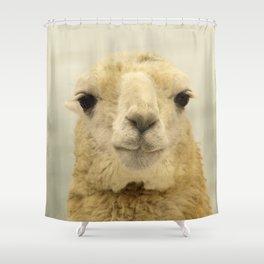 White Llama... Shower Curtain