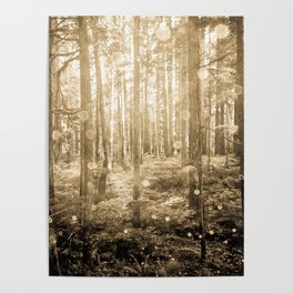 Vintage Sepia Fairy Forest Poster