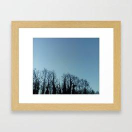 Fog and Forest- wood,mist,romantic, greenery,sunset,dawn,Landes forest,fantasy Framed Art Print