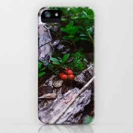 Lingonberry close up at forest in Finland. Wild red lingonberry print. iPhone Case