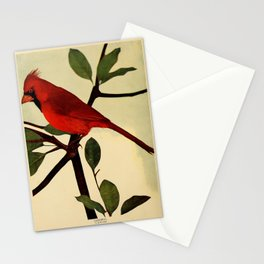 Neltje Blanchan - Bird Neighbours (1903) - Cardinal Stationery Cards