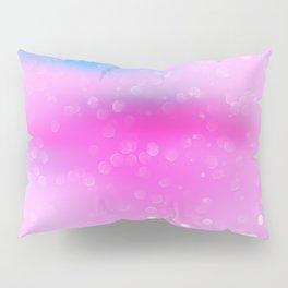 Color Shine Pillow Sham