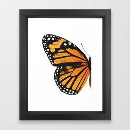 Monarch Butterfly | Left Butterfly Wing | Vintage Butterflies | Framed Art Print