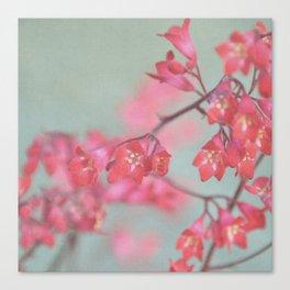 coral & green Canvas Print