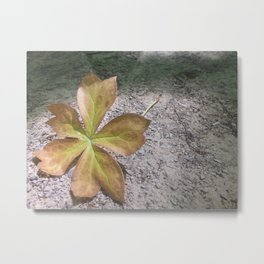 Pick It Up Metal Print