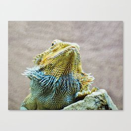 KEEPING UP APPEARANCES Canvas Print
