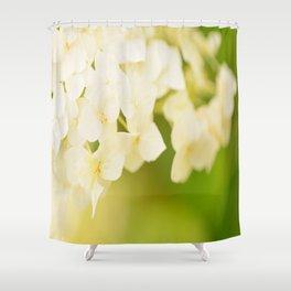 White Hydrangea On A Green Background #decor #buyart #society6 Shower Curtain