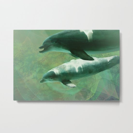 Two Dolphins Metal Print