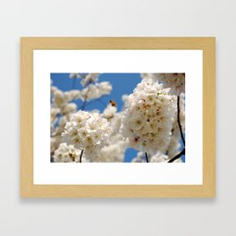 In Bloom 2 Framed Art Print