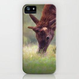 Young Elk Grazing iPhone Case