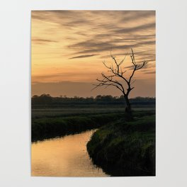 Beautiful scenic view of the sunset in the Ticino river natural park during fall Poster