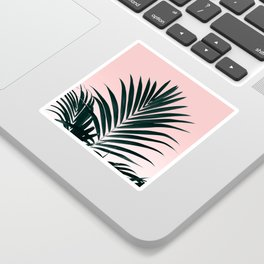 Tropical Green palm tree leaf blush pink gradient photography Sticker