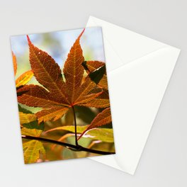 Japanese Maple Leaf Stationery Cards