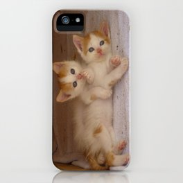 Brother and Sister iPhone Case