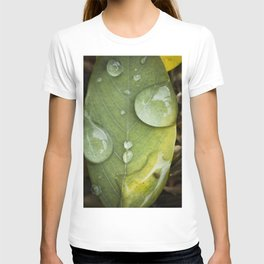 Raindrops on a green leaf T-shirt