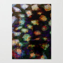 Zebre fuo Canvas Print