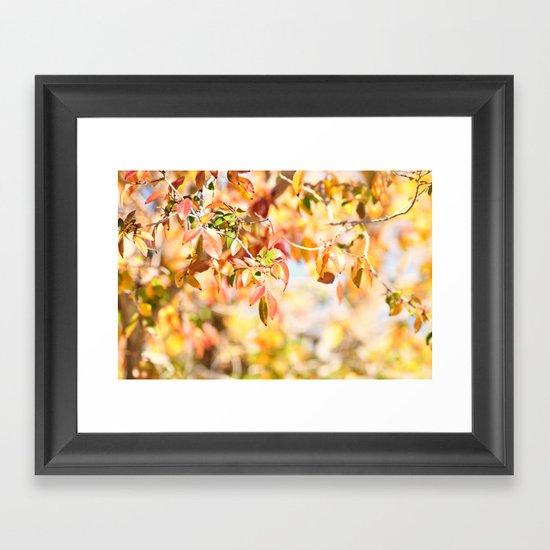 Enchanted... Framed Art Print