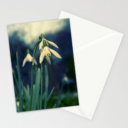 Key of Spring Stationery Cards
