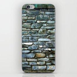 Rothko iPhone Skin