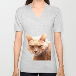 Red cat watching Unisex V-Neck