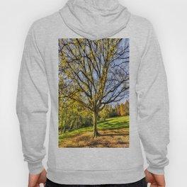 The Autumn Tree Hoody