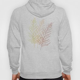 Red Ferns Hoody