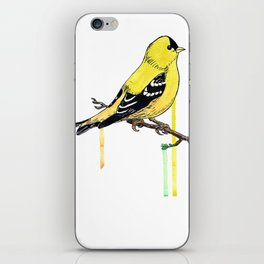 Goldfinch iPhone Skin