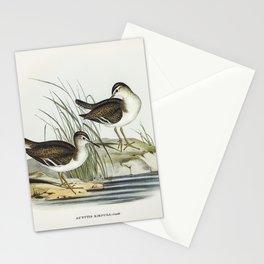 Vintage seabirds Stationery Cards