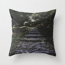 Wander - Nature Photography Throw Pillow