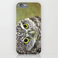 Burrowing Owl Slim Case iPhone 6