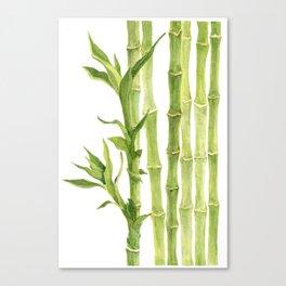 Panda's food Canvas Print