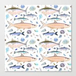 Shell Fish - Blue Orange Colorway - Casart Sea Life Treasures Collection Canvas Print