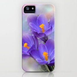 the beauty of a summerday -94- iPhone Case