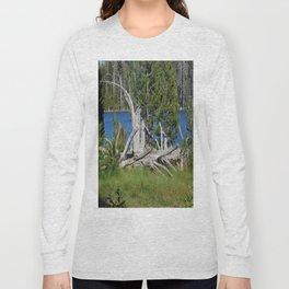 road trip, wood pile, lake, grass, snag Long Sleeve T-shirt