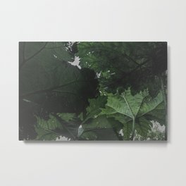 Giant Green Plants - Nature Photography Metal Print