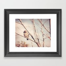Little Sparrow Framed Art Print
