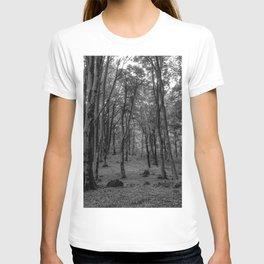 Black and White Soriano nel Cimino's Faggeta, Italy - Mount Cimino Faggeta T-shirt