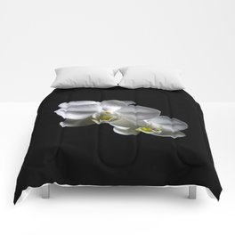 Low key orchids... Comforters
